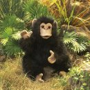 Folkmanis Baby Schimpanse