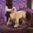 Folkmanis Französische Bulldogge