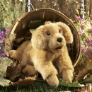 Folkmanis Golden Retriever Baby
